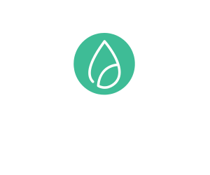 adseed Affiliate Blog
